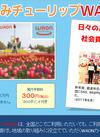 ★となみチューリップWAON販売中!
