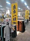 【レディスファッション】在庫一掃セール