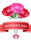 ✿✿✿ 母の日ギフト 承り中 ✿✿✿
