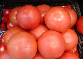 週末はトマトがお買得!