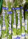 ニラ 139円(税込)