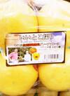 いいとこ採りグレープフルーツ 431円(税込)