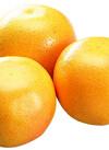 グレープフルーツ 88円(税抜)