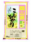 こしひかり 3,380円(税抜)