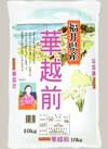 華越前 1,598円(税抜)