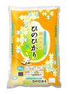 ひのひかり 2,980円(税抜)