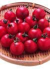大河内農園のミニトマト 98円(税抜)