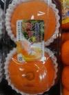マドンナ 426円