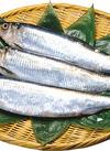 にしん(春告げ魚) 50円(税抜)