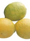 国産レモン 298円(税抜)