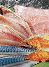 干物・丸干・漬魚 20%引