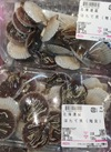 ほたて貝(稚貝) 108円(税抜)