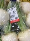 かぶ 121円(税抜)