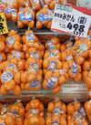 青島みかん 498円(税抜)
