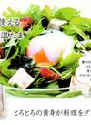 いろいろ使える味菜卵の温たま 160円(税込)