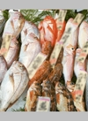 鮮魚各種500円セール 500円(税抜)