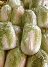白菜 195円(税抜)