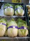 白菜 178円(税抜)