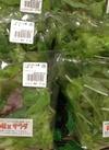 ベビーリーフ 130円(税抜)
