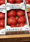 箱入りトマト 800円(税抜)