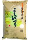 こしひかり 1,690円(税抜)