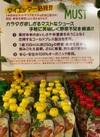 オーガニックコールドプレスジュースMUST 199円