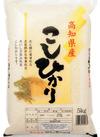 高知県産こしひかり 1,780円(税抜)