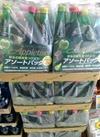 アップルタイザー 400円(税抜)