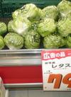 レタス 79円(税抜)