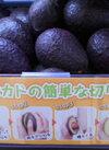 アボカド 128円(税抜)