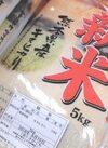 熊本県産キヌヒカリ 1,650円(税抜)