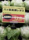 八ヶ岳高原レタス 128円(税抜)