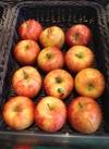 サンつがるりんご 98円(税抜)