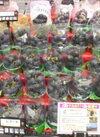 ピオーネ 398円(税抜)