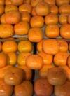 種無し柿(大玉) 78円(税抜)