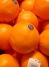 ネーブルオレンジ 106円(税込)