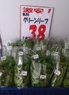 グリーンリーフ 38円(税抜)