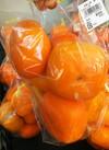 種なし柿 大袋 500円(税抜)