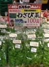 わさび菜 100円(税抜)