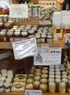 ハチミツ 2,200円(税抜)