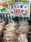 エリンギ 240円(税抜)