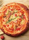 ピザ 各種 ※写真はイメージです。 469円(税抜)