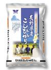 長野松本ハイランド新米コシヒカリ 1,599円(税抜)