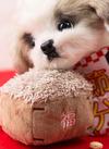 ペットおもちゃ(豆まき) 300円(税抜)