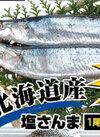 塩さんま 100円(税抜)