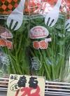 春菊 128円