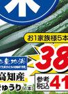 きゅうり 38円(税抜)