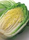 白菜 1/2カット 98円(税抜)