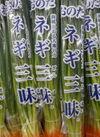 ねぎ三昧 98円(税抜)