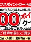 1000円以上お買い上げで100ポイントプレゼント 100ポイントプレゼント